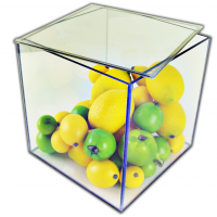 Acrylic 5 Sided Box w/ Removable Top Lid