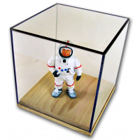 Display Boxes With Natural Wood Bases