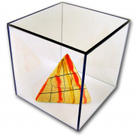 Acrylic Display Boxes With White Bases